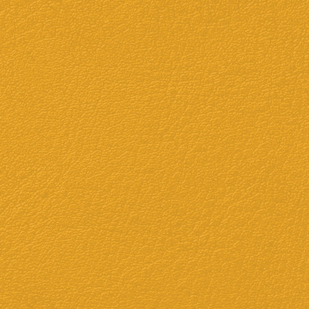 Marigold / Popular Leather & Leatherette Options
