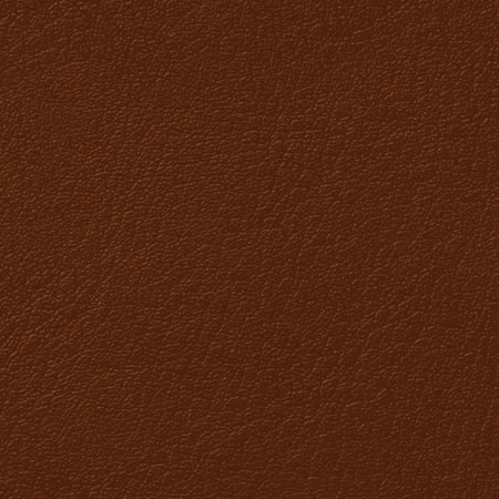 Shire Pony / Popular Leather & Leatherette Options