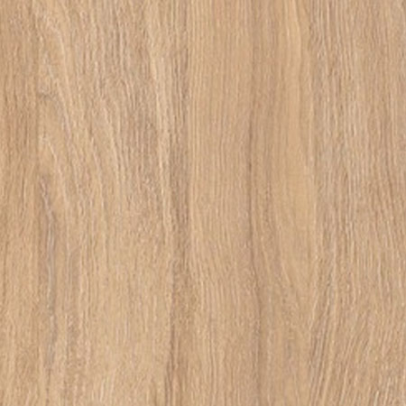 Horsebox Living Veneers / Swiss Elm